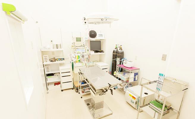 浦和の動物病院 チャムどうぶつ病院